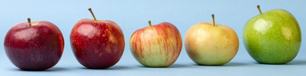 Apfel Vielfalt Landwirtschaft